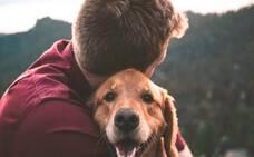 El riesgo en los humanos puede no depender del animal