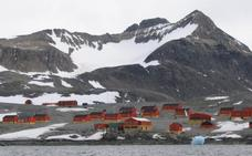 Extraños lugares donde nacer: de la Antártida a la copa de un árbol
