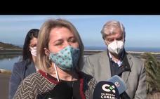 El Gobierno de Canarias compensa con 750.000 euros a los productores de piña