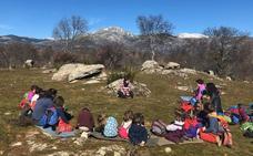 Bosquescuela, un colegio en la naturaleza