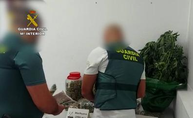 Detenido en Morro Jable por cultivar marihuana en la azotea