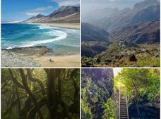 Canarias, reina de las redes sociales este verano 2021