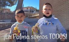 El emotivo vídeo viral de un cole en Guadalajara con La Palma