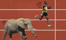 Cuánto de rápido puede correr un deportista