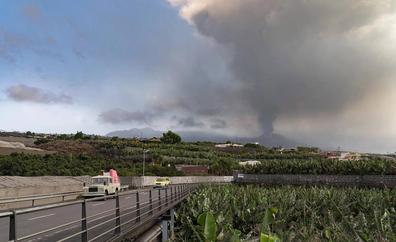 195 empresas con 895 trabajadores se han acogido a los ERTE específicos por el volcán