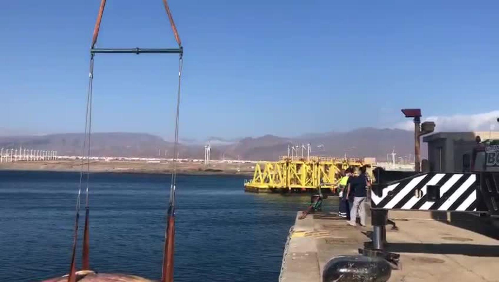 Trasladan al cetáceo varado en Telde al vertedero de Juan Grande